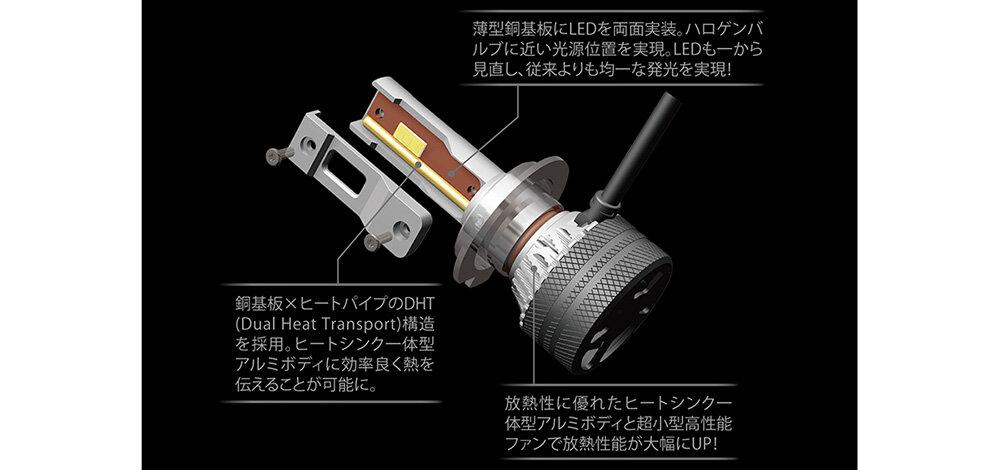 BW551-D.jpg