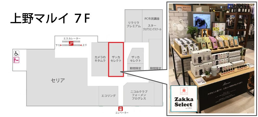 カーメイト 芳香剤 ブラング・ルーノ初 上野マルイで期間限定販売 取扱店舗 の紹介