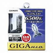 gh965-260.jpg